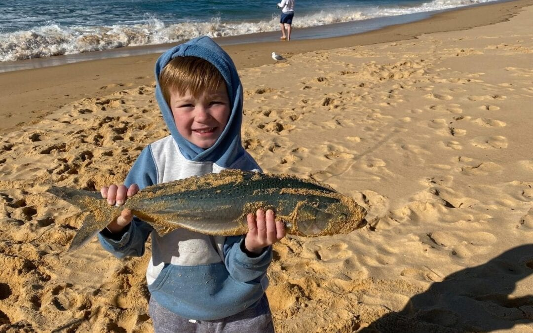FISHING REPORT FOR WEEK COMMENCING 14 SEPTEMBER 2020